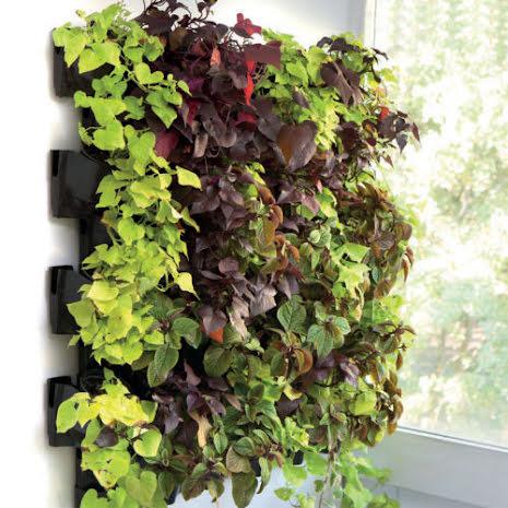 Versa Garden Green Wall