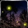 fishnoodle.fireflies