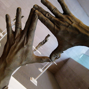Sculptured Hands by Megan Whitehead - Artistic Objects Other Objects ( sculpture, hands, art )