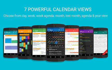 DigiCal Calendar Screenshot 1