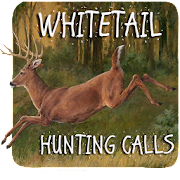 Download Whitetail Hunting Calls APK for Android Kitkat