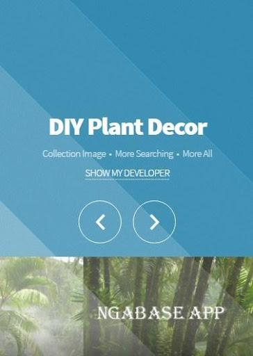 DIY植物裝飾