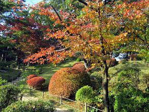 Photo: Ensimmäinen vierailukohteemme oli Shukkeienin puisto, joka loisti upeana ruskan väreissä