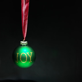 joy by Aaron Nappin - Public Holidays Christmas ( holiday, bauble, red, joy, green, silver, ribbon, christmas, decorations, shiny )