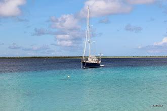 Photo: Velero sobre la costa de Bonaire