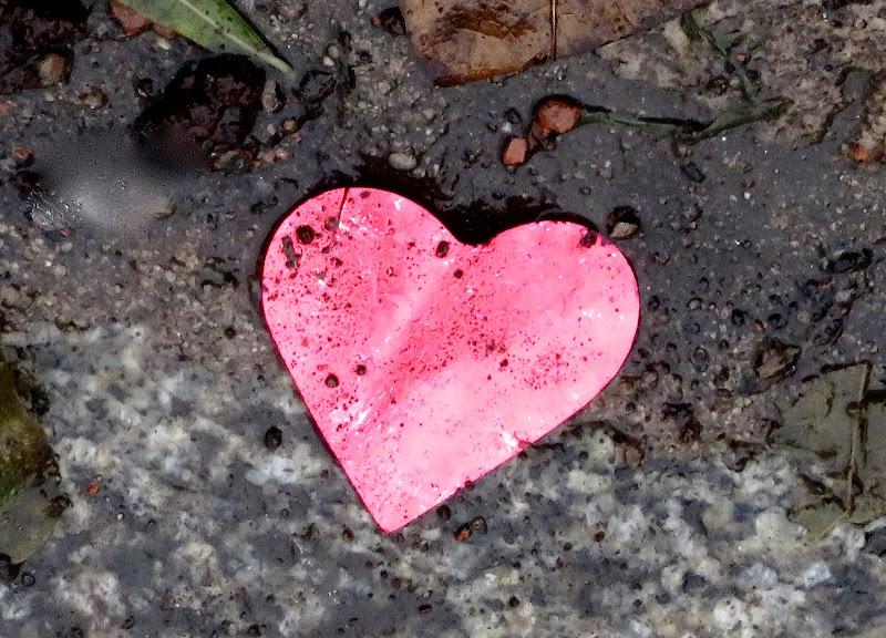 cuore disperso di mariellaturlon