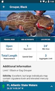 Fish Rules 2
