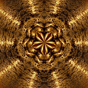 Sun Anise by Mick Brinkmann - Abstract Patterns