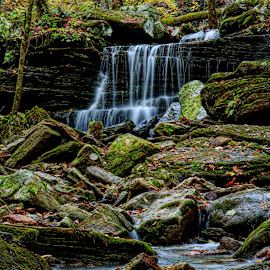 Lower Long Pool Falls by Wesley Nesbitt - Nature Up Close Other Natural Objects ( nature, waterfall, paint, ozarks, leaf )