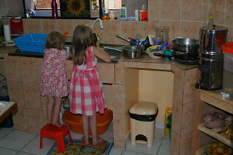 Photo: Anne and Addi love to wash dishes.  They do a great job on silverware and plastics