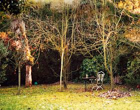 Photo: the yard garden at handke's domicile