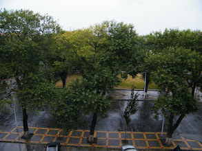 Photo: a drizzle in Autumn, outside of my QRRS office.