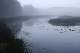 Photo: Brume derrière la petite digue