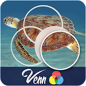 Venn Turtles: Circle Jigsaw