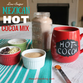 Mexican Hot Cocoa Powdered Milk Recipes