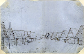"""Photo: Sketch of Dobbo, Aru Islands by A. R. Wallace in 1857. Probably used as the basis for the illustration """"Dobbo in the trading season"""" in his book The Malay Archipelago. Copyright The A. R. Wallace Memorial Fund."""