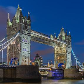 Majestic Tower Bridge by Augustin Galatanu - Buildings & Architecture Bridges & Suspended Structures ( blue hour, tower bridge, landscape, the gherkin )