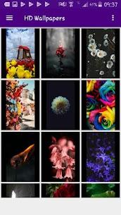 HD Wallpapers Offline 3