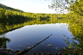 Photo: The pond.