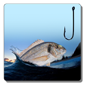 Fishing Day icon