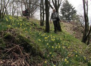 Photo: Afdaling naar de Fuhrtsbach