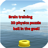 Brain training 3D physics puzzle ball in the goal!