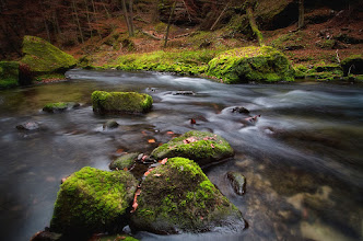 "Photo: Kamenice river in Bohemian Switzerland. Taken last sunday on ""Saxony Switzerland"" tour."