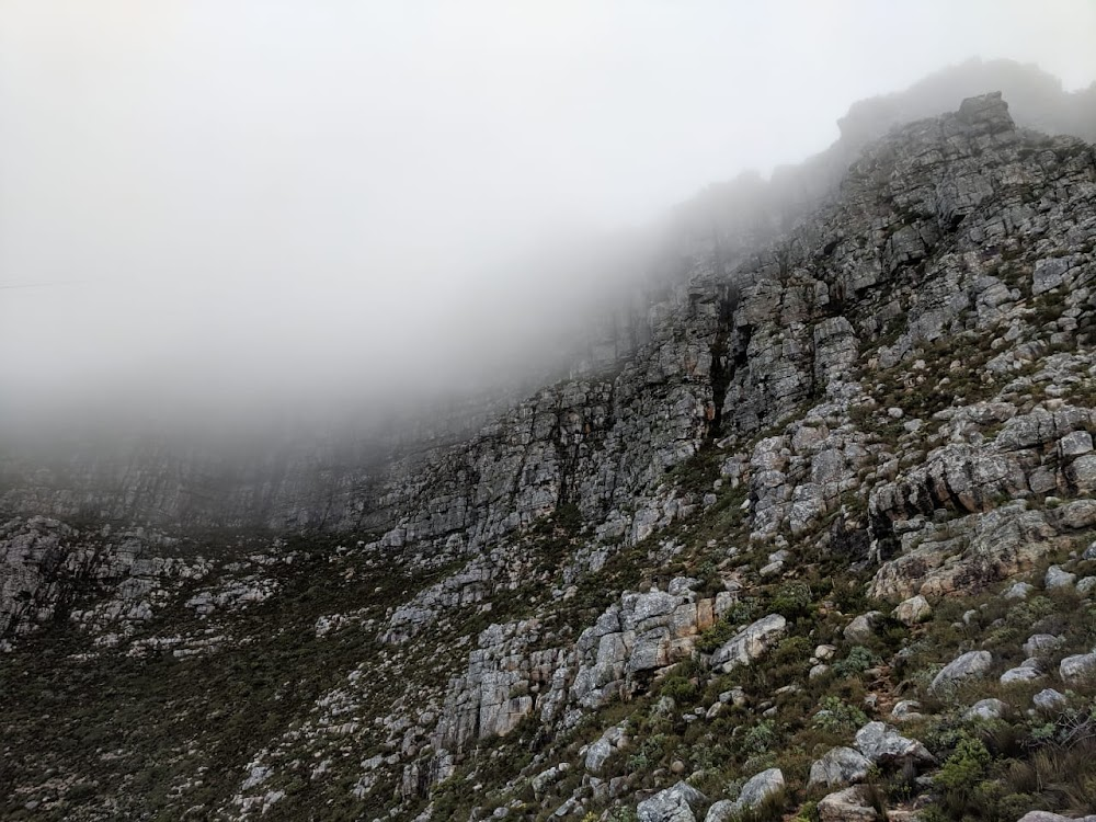 Helicopter, search teams comb Table Mountain for missing trail runner - TimesLIVE