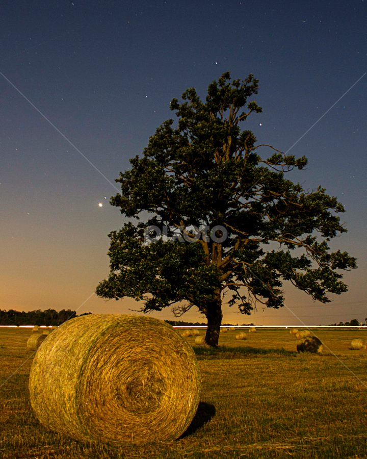 by SumPics Photography - Landscapes Prairies, Meadows & Fields ( pwcsummer )
