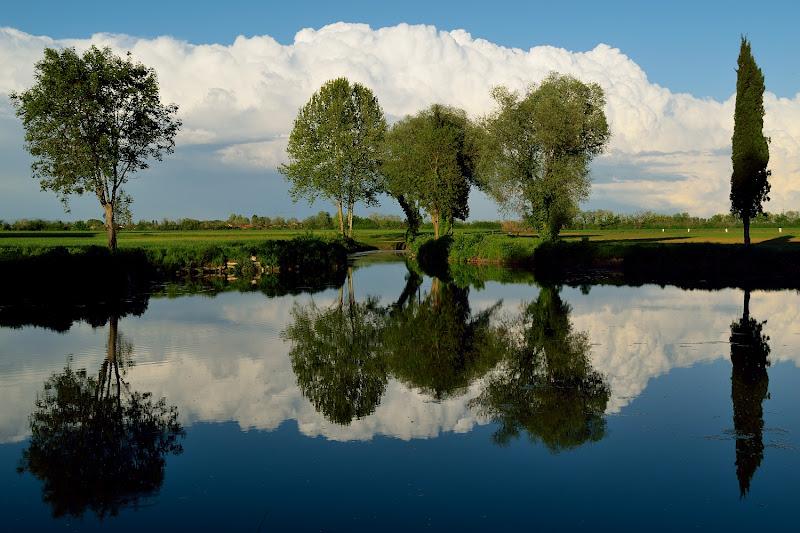 Specchio d'acqua di Ethan Debattisti