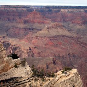 The Grand Canyon by Jud Joyce - Landscapes Travel ( arizona, national parks, grand canyon )