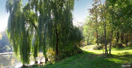 Photo: Бережанський дендропарк в с.Рай