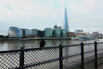 Photo: The Shard (střep) nejvyšší budova Londýna (309,6 m) a druhá nejvyšší v Evropě  City Hall - londýnská radnice  a další http://www.turistika.cz/cestopisy/londyn-tower-bridge-city-of-london-the-shard-belfast-greenwich-nulty-polednik-a-dalsi