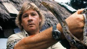 Steve's Most Dangerous Adventures thumbnail