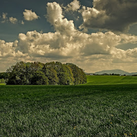 Dubnová krajina by Vláďa Lipina - Landscapes Prairies, Meadows & Fields