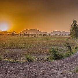 Dreamland by Fateen Younis - Landscapes Sunsets & Sunrises ( hills, sky, pathway, sunset, landscape,  )