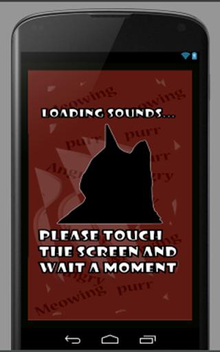 Sonido de Gatos