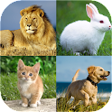 Animal dictionary puzzle game icon