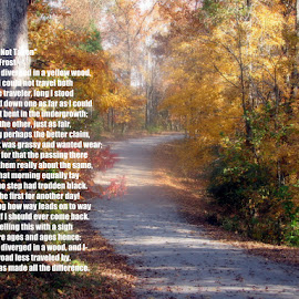 The Road Not Taken by Phil Williams - Typography Quotes & Sentences ( autumn, yellow, woods )