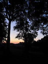 Photo: Colorful dusk between trees at Eastwood Park in Dayton, Ohio.