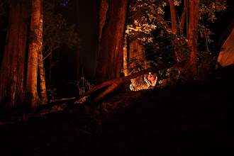 Photo: The campfire that night