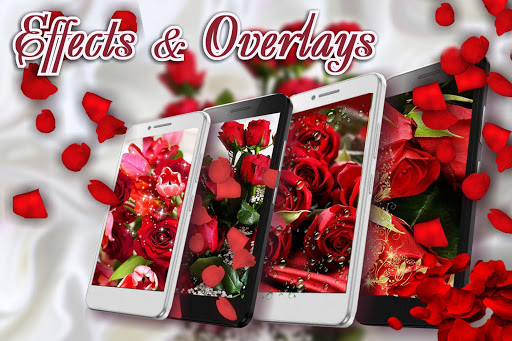 Download Red Roses Love Live Wallpaper For Free Latest 1 7 Version