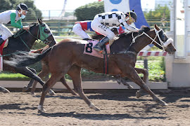 Escalona (Awesome Patriot) se queda con Handicap (1200m-Arena-HCH).