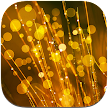 Dream Live Wallpapers APK