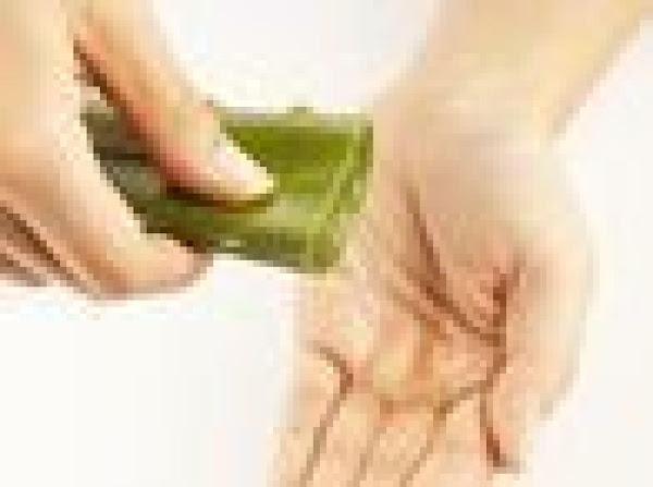 Make Your Own Aloe Vera Gel Recipe