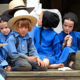 Amish Children by Denise Guthery - Babies & Children Children Candids ( pennsylvania, blue, children, amish, hats,  )
