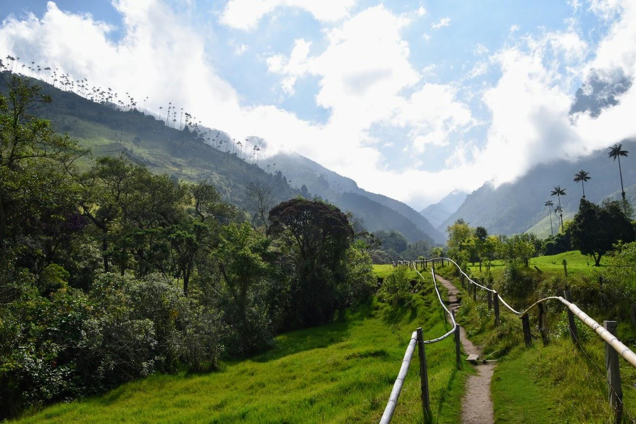 Trekking por el Valle del Cocora Colombia