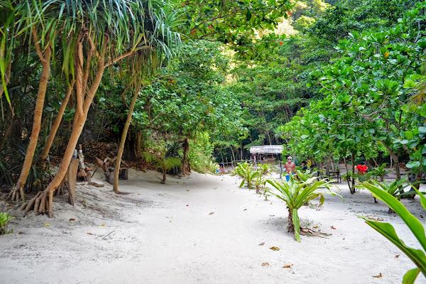 Explore the inner of Koh Phi Phi Leh