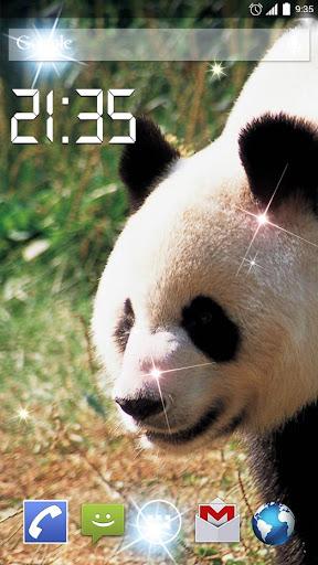 Cute Panda 4K Live Wallpaper
