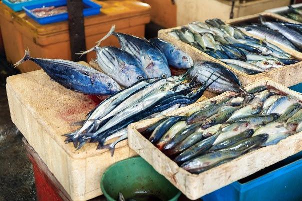 Jimbaran-Fish-Market
